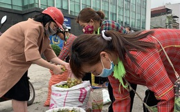 Giải cứu mận cơm ở Lạng Sơn