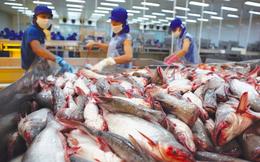Tín hiệu tốt từ Trung Quốc, xuất khẩu thủy sản tháng 4 dự báo tăng 10%