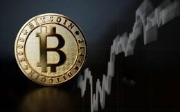 Bitcoin sẽ diễn biến ra sao trong quý 2?