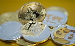 """Những đồng tiền ảo tăng """"khủng"""" nhất từ đầu năm, Bitcoin còn không lọt Top 10"""