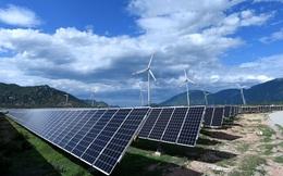 Hơn 1 năm sau khi hoàn thành, Tập đoàn Trung Nam bán 49% nhà máy điện mặt trời vốn đầu tư 5.000 tỷ đồng