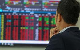 VCSC: Nhà đầu tư đang chờ xác nhận liệu thị trường có thể hấp thụ được lượng lớn cổ phiếu đã bán ra hay bắt đầu một quá trình phân phối