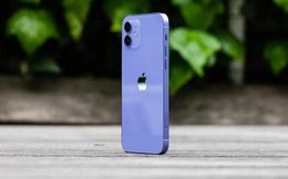 Đây là iPhone 12 màu tím Apple vừa ra mắt