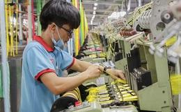 Thuận Đức (TDP): Quý 1 lãi 30 tỷ đồng tăng 120% so với cùng kỳ