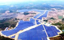 Nhà máy A Lưới gặp sự cố khiến Thuỷ điện miền Trung lỗ lớn trong quý 1