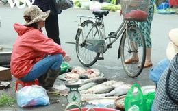 Nhan nhản chợ cóc chiếm dụng lòng đường trên nhiều tuyến phố Hà Nội