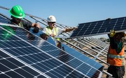 Diễn đàn Kinh tế thế giới: Việt Nam là một trong 5 cột mốc về năng lượng xanh trên toàn cầu