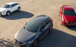 SUV đô thị và cuộc cạnh tranh gay cấn của những chiếc xe… lỡ cỡ
