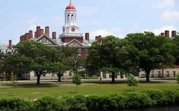 Đại học nào sản sinh nhiều tỷ phú nhất thế giới?