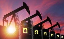 Giá dầu Brent tăng cao giúp PVOIL lãi 191 tỷ đồng trong quý 1