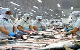 Xuất khẩu thủy sản sang Mỹ tiếp tục tăng mạnh