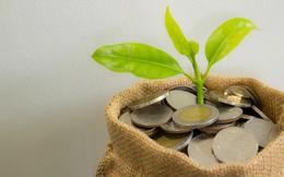 Điểm danh những doanh nghiệp chốt quyền nhận cổ tức bằng tiền, bằng cổ phiếu và cổ phiếu thưởng tuần từ 5/4-9/4