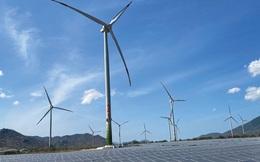 Đã có thời điểm phải tiết giảm gần 8 GW nguồn điện mặt trời, điện gió