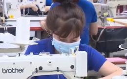 Dệt may Việt Nam sẽ bán hàng qua Amazon