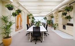 """Văn phòng """"xanh"""" đang cạnh tranh với toà nhà truyền thống"""