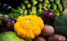 Loại thực phẩm nào ngăn ngừa sự hình thành các tế bào ung thư?