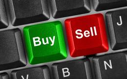FIT, HPG, DLG, VN, THB, PVL, MIC, TR1, BVG, GLT, KDM: Thông tin giao dịch lượng lớn cổ phiếu