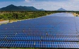 EVN: Sản lượng điện tái tạo quý I/2021 tăng hơn 180%