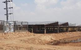 Dấu hiệu bất thường trong vụ mua bán điện mặt trời ở Sóc Trăng?