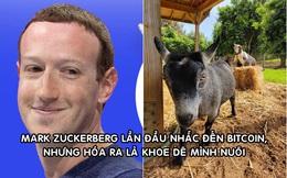 Mark Zuckerberg khoe ảnh nuôi dê, đặt tên là Bitcoin: Hút hơn 400.000 lượt thích sau hơn 3 giờ đăng tải