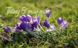 Tháng 5 là tháng may mắn của 5 con giáp này, từ ngày 12 đến 16/5 được thần tài che chở, chuyện vui chồng chất