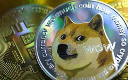 Financial Times: Dogecoin - Canh bạc hời hay 'cú lừa'?