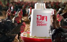 Bloomberg: Masan Group muốn huy động 1 tỷ USD cho mảng thức ăn chăn nuôi
