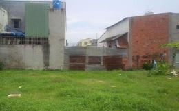 Xử lý nghiêm tình trạng xây dựng trái phép trên đất nông nghiệp