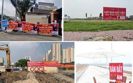 """Nở rộ dự án """"bán lúa non"""", nhiều địa phương cảnh báo gấp"""