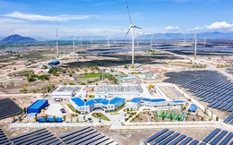 Mới huy động thêm 2.000 tỷ đồng trái phiếu và bán cổ phần tại hai dự án điện tái tạo, dòng tiền lớn đổ về Trung Nam Group
