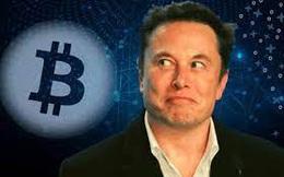 Người dùng Twitter nổi giận, tung bằng chứng tố cáo Elon Musk kiếm lời hàng chục triệu USD từ thao túng giá Bitcoin