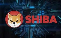 Nhà tạo lập Ethereum vẫn bị đánh thuế dù cho đi cả tỷ USD tiền số Shiba Inu