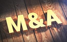 """M&A đang dần """"trỗi dậy"""""""