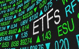 VCI, PDR và HSG sẽ lọt rổ ETFs trong kỳ review tháng 6?