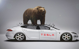 'Phe con gấu' trở lại, Tesla tiếp tục là cổ phiếu bị bán khống nhiều nhất thế giới