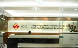 Danh sách 88 doanh nghiệp SCIC bán vốn năm 2021: Giá trị nhiều tỷ USD, hàng loạt Tổng công ty như Sông Đà, Sabeco, Vinatex, Vocarimex, Licogi..