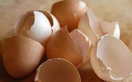 Sau khi ăn trứng, bạn đừng vội vứt bỏ vỏ trứng, nó có thể dùng làm thuốc chữa 4 loại bệnh thường gặp, vừa hiệu quả vừa tiết kiệm