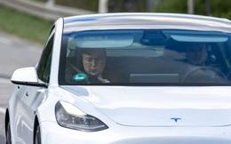 Mất hàng triệu USD vì Elon Musk mạo danh, dân Mỹ cầu cứu chính quyền liên bang