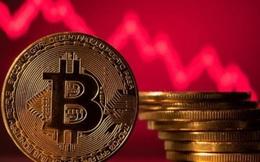 Bitcoin diễn biến tệ nhất trong lịch sử của giới tài chính, nên bán hay mua vào lúc này?