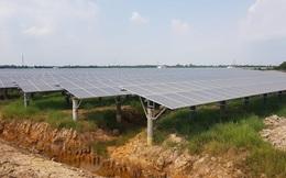 Tiến hành rà soát dự án điện mặt trời mái nhà tại Bình Phước