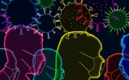 Khi nào đại dịch COVID-19 kết thúc? Chúng ta có 'xóa sổ' được SARS-CoV-2 không?