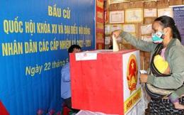 Truyền thông quốc tế nói gì về cuộc bầu cử tại Việt Nam trong bối cảnh dịch bệnh hiện nay?