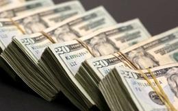 Đồng USD từ mức đáy 3 tháng hiện nay sẽ hồi phục hay còn trượt giá lâu dài?