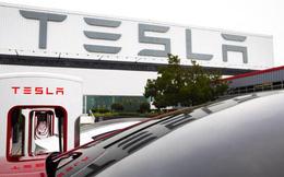 Giới bán khống cổ phiếu Tesla đang lãi hàng tỷ USD