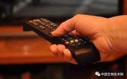 Nghiên cứu của Mỹ: Mỗi ngày xem TV thêm 1 giờ, não của bạn sẽ mất đi 0.5% chất xám