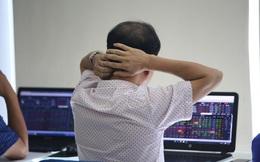 Chọn sai cổ phiếu, nhiều nhà đầu tư vẫn thua lỗ bất chấp thị trường vượt đỉnh