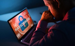 Tin tặc tại Việt Nam đang gia tăng