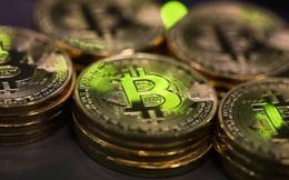 Cú sập Bitcoin làm lộ lỗ hổng thuế để nhà đầu tư lách luật