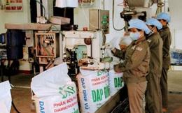 Tập đoàn Hoá chất lên kế hoạch thoái vốn tại DAP Vinachem (DDV), có thể giảm về 0%