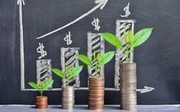 Cổ phiếu vốn hóa và vừa nhỏ giao dịch ra sao khi VN-Index vượt 1.300 điểm?
